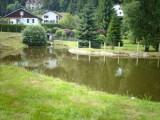 location-maison-le-menil-hautes-vosges-vacances-6-140537