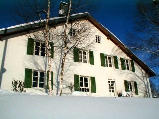 studio-appartement-location-vosges-le-thillot-10-184274